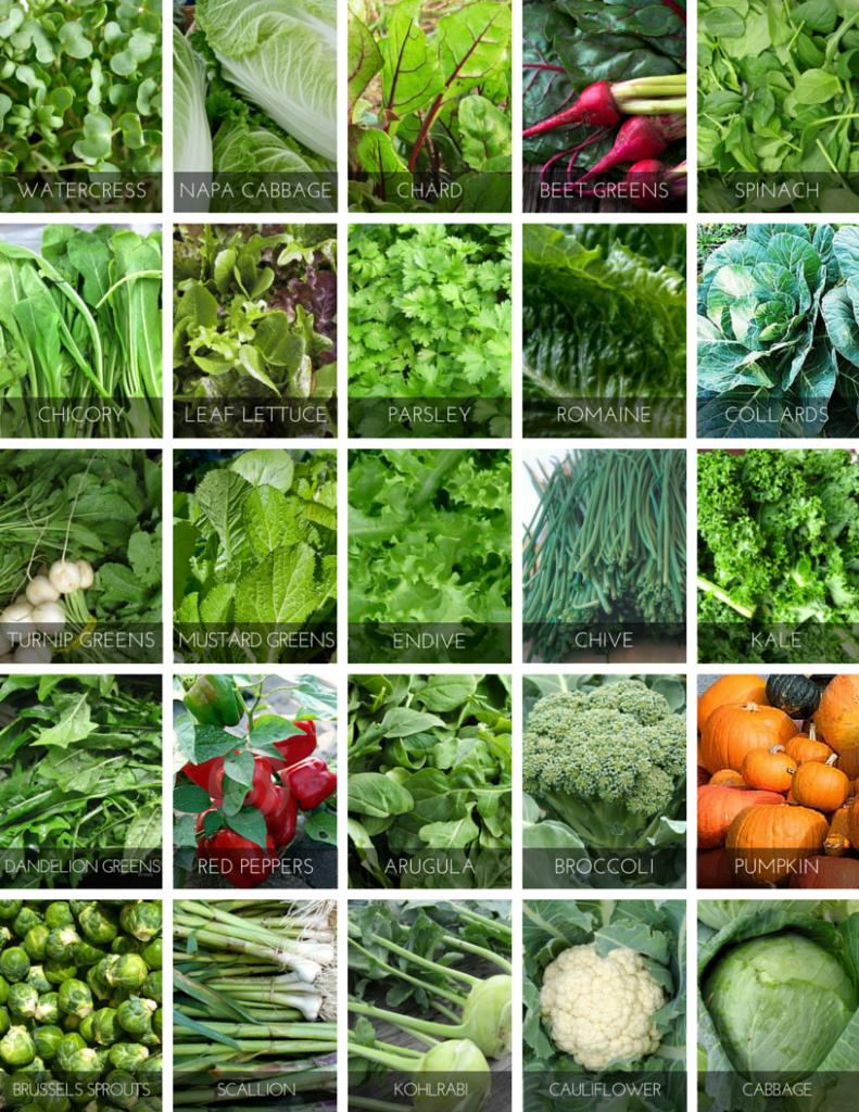 top 25 Powerhouse Vegetables